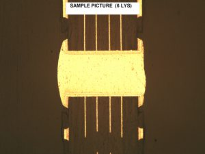 6-layer Microsection Sample